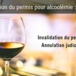 Annulation de permis pour alcoolémie : 2 cas